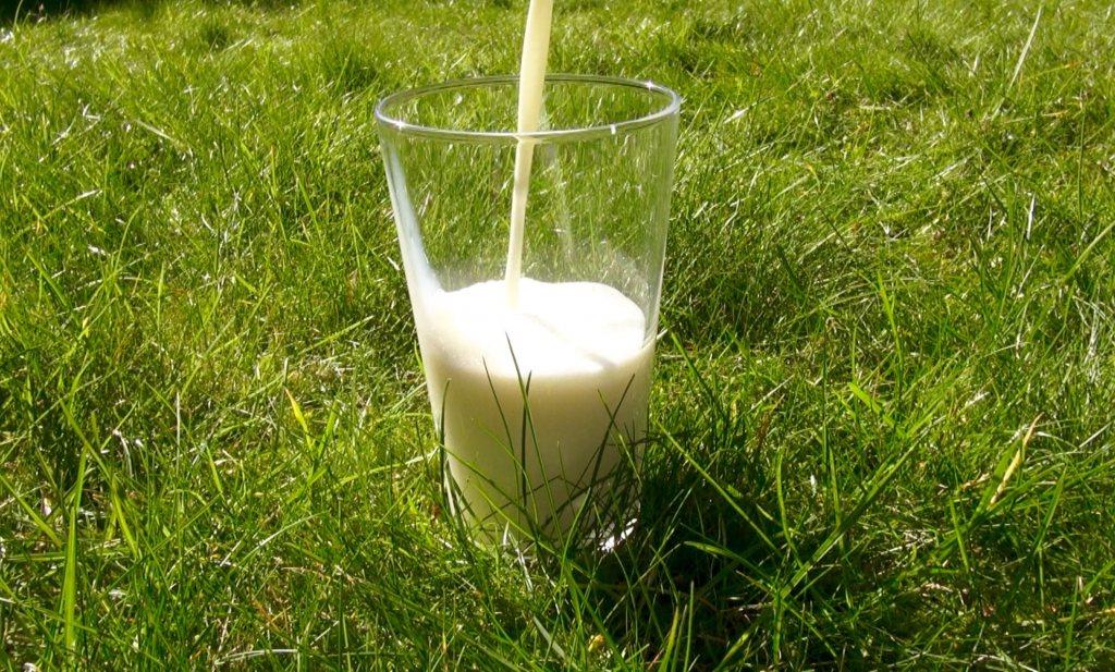Campina komt met nieuwe melk 'Actieve Dag'