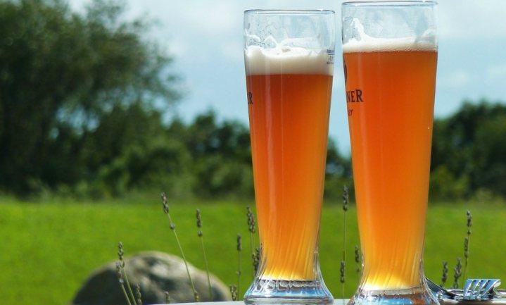 'Alcoholvrij bier geen hype, maar trend'