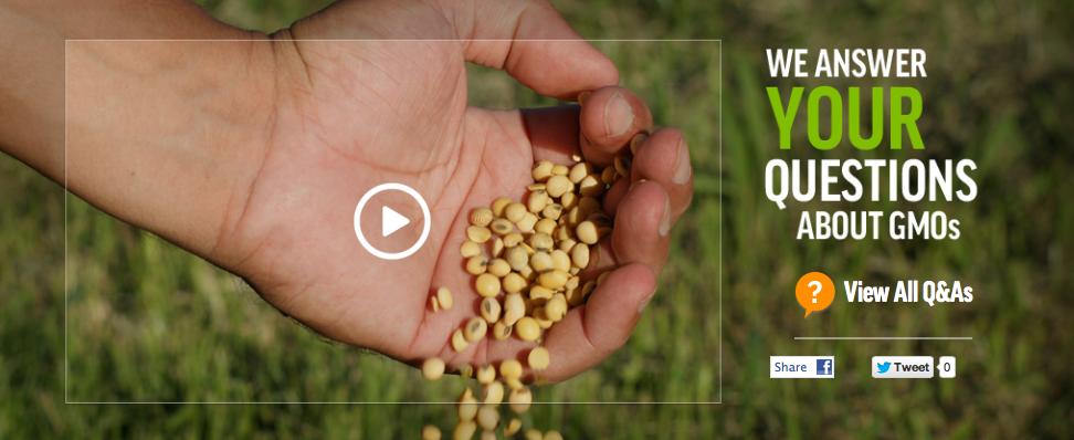 GMO bedrijven geven antwoord