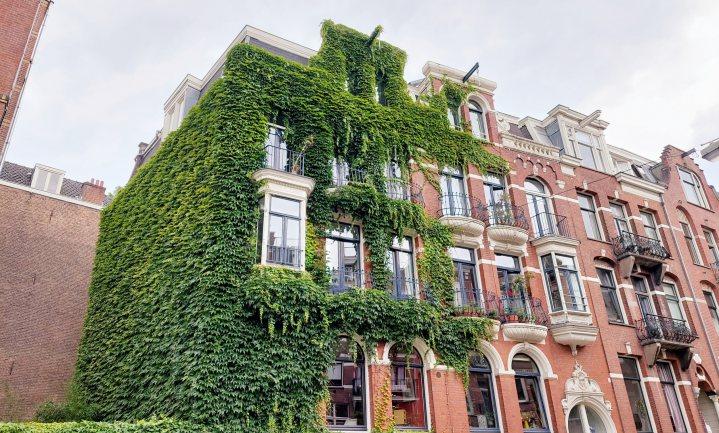 Verticaal stadsgroen scheelt stress, energie en vrij uitgeblazen CO2