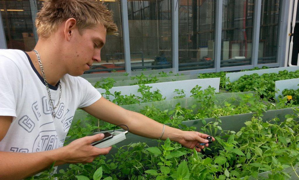 Kennis landbouw in Nederland 'raakt bedreigd'