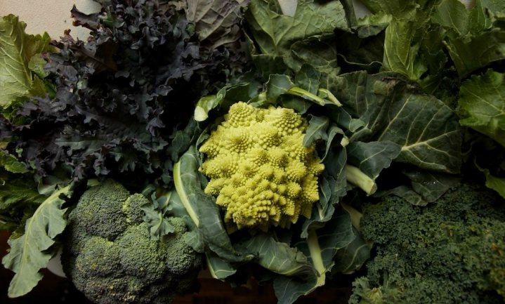 'Groenten gaan hersenveroudering tegen'