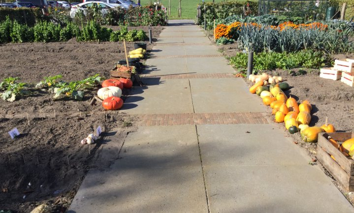 Boeren produceren te veel koolhydraten en te weinig groente en fruit