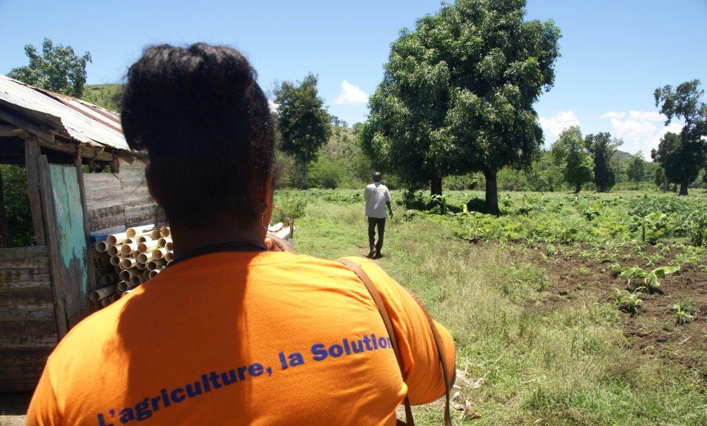 Haïti eet slecht door onze landbouwsubsidies