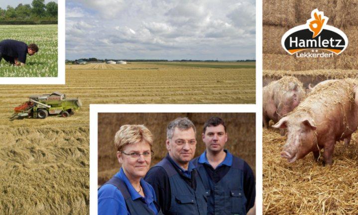Nieuwe stal, nieuwe varkens en investering verzekerd