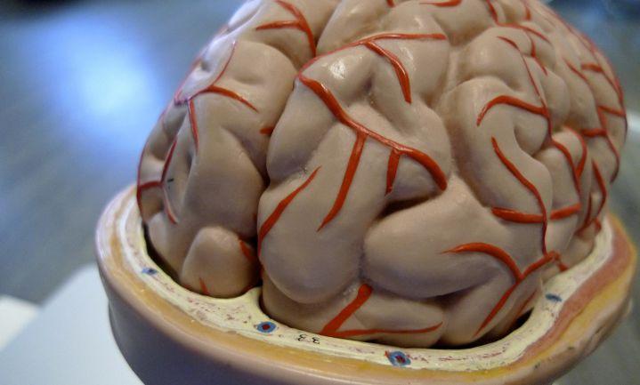 Desinfectie werkt behandeling hersenvliesontsteking tegen
