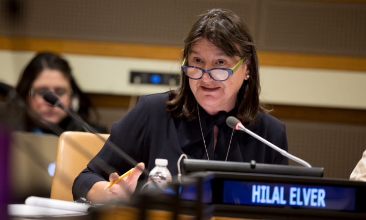 VN official Elver: 'dump de industriële landbouw'
