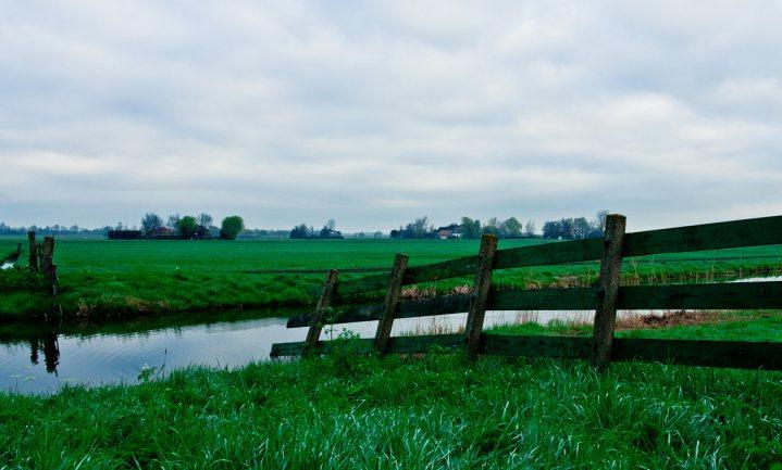 Nieuw landbouwbeleid 'groen gewassen'; Nederland toont zich dik tevreden
