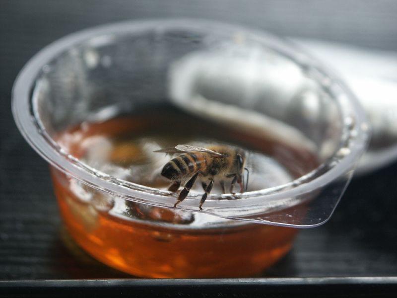 Microplastic nu ook in honing aangetroffen