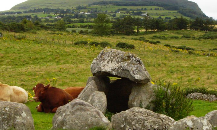 Ierland melkt al 6.000 jaar