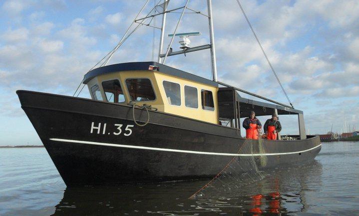 'Windmolens schadelijker dan vissers'