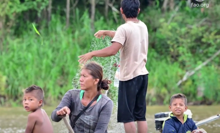 FAO-rapport: leer over biodiversiteit van inheemse volkeren