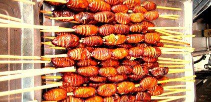 Verkoop insecten verboden - behalve in België