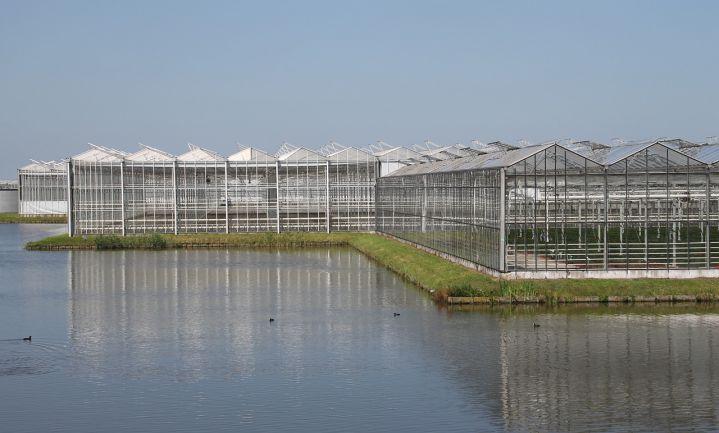 Nieuw fonds voor sanering glastuinbouw