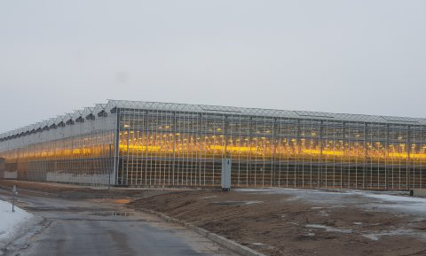 Boeren en groente telen in het beloofde land van Kazachstan
