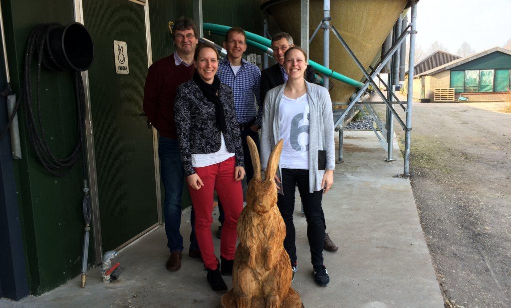 Belgen slachten en eten het Hollandse konijn