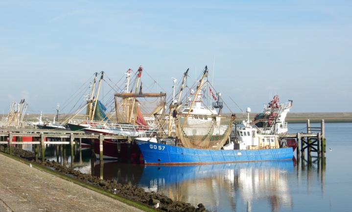 Trawlervisserij brengt evenveel CO2 in de atmosfeer als luchtvaart
