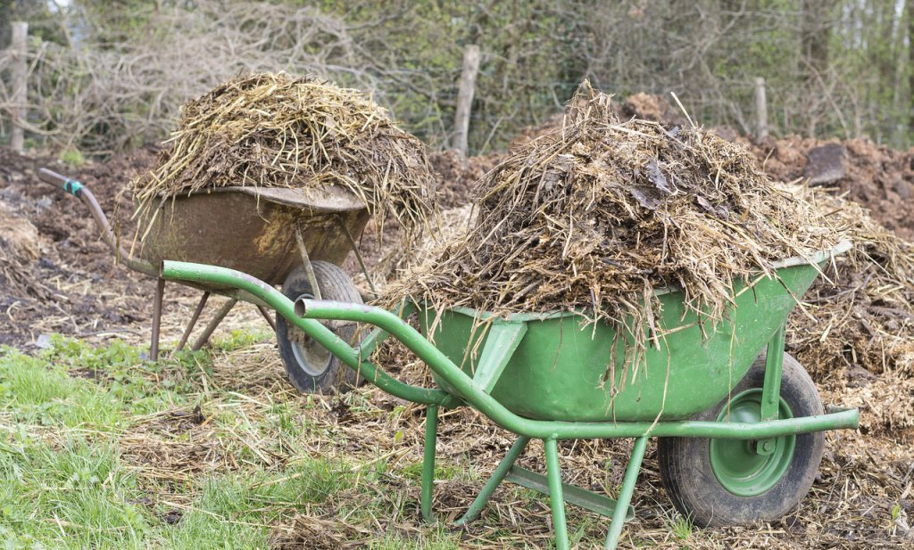 Milieuorganisaties adviseren Brussel Nederlandse boeren geen mestvrijstelling te geven