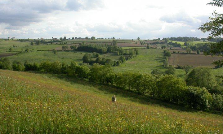Klimaatontkenners in VS krijgen aandacht, Rotterdam wil kampioen zon zijn, 70% Belgische boeren weg