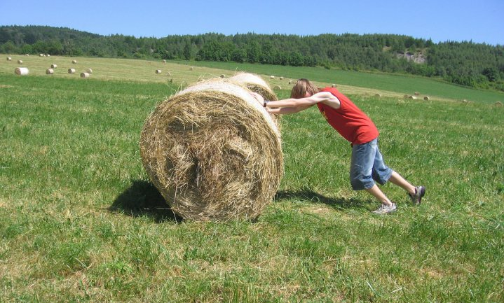 Het Europese landbouwbudget is kleingeld
