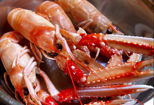 Culinair ontdekt: Langoustines