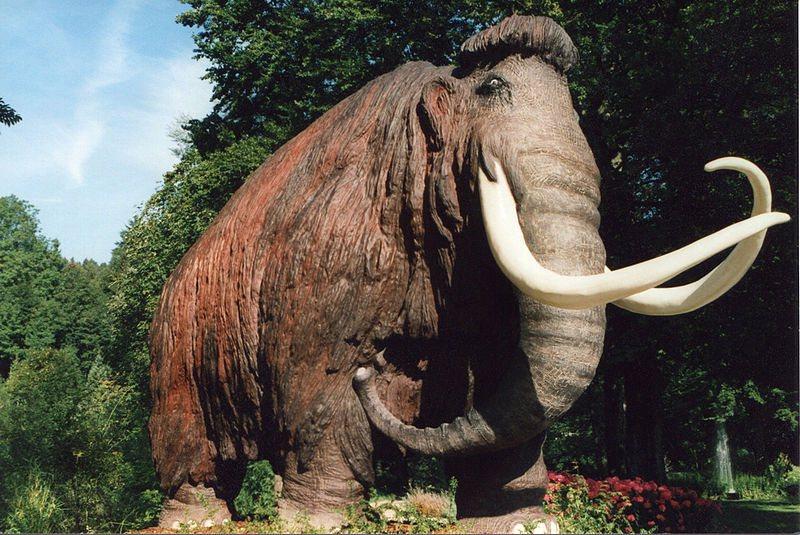 De oermens was een toproofdier en at vooral vlees