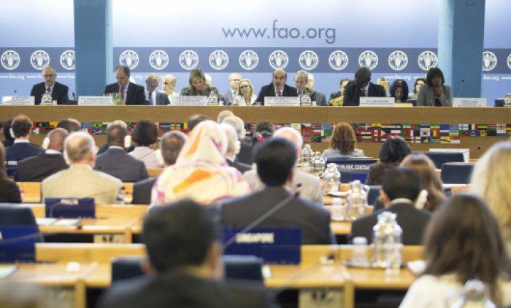 FAO: niet klimaat, maar geopolitiek en valuta bedreigen 's werelds voedselzekerheid nu het meest