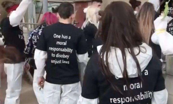 Varkenshouderij in Boxtel bezet door internationale dierenactivisten