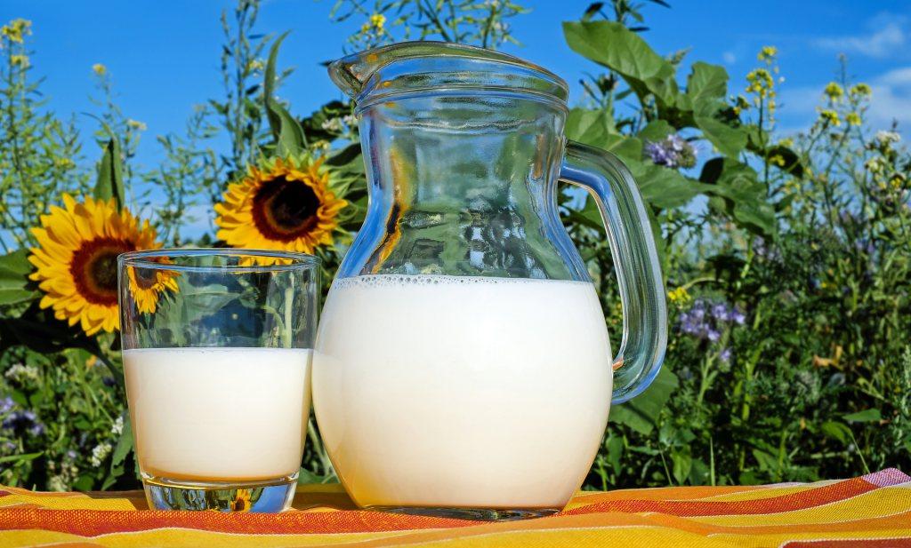 In Australië zijn volle melk en yoghurt en volvette kaas gezond voor het hart