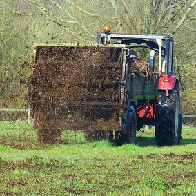 Onbekend aantal koeienboeren 'op slot' door inadequate mestwetgeving