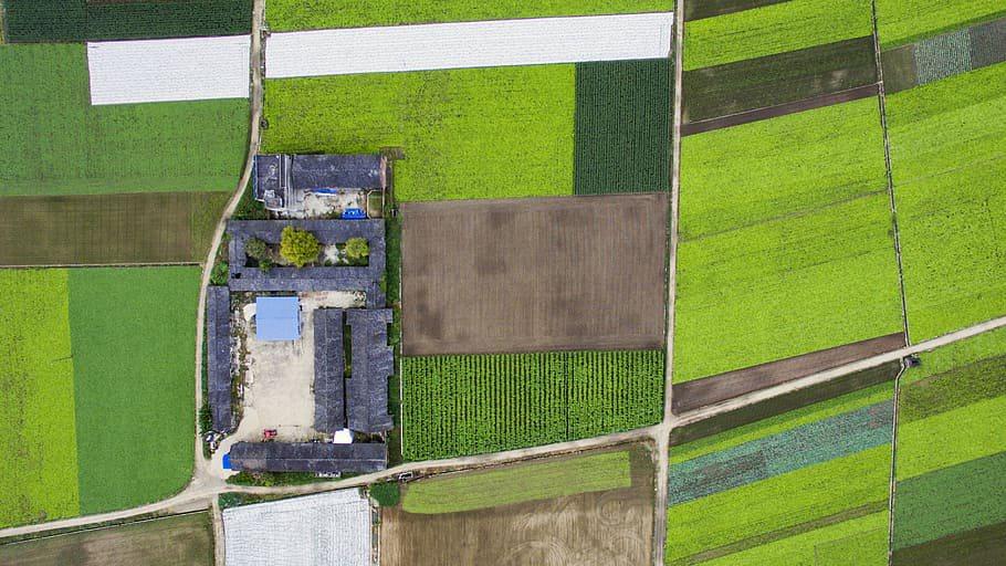 Gemiddeld vermogen agrarisch bedrijf groeide in 17 jaar van €1,5 naar €3,5 miljoen