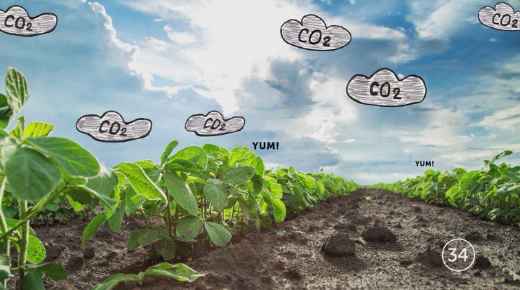 Monsanto wil bijdragen aan klimaatvraagstuk