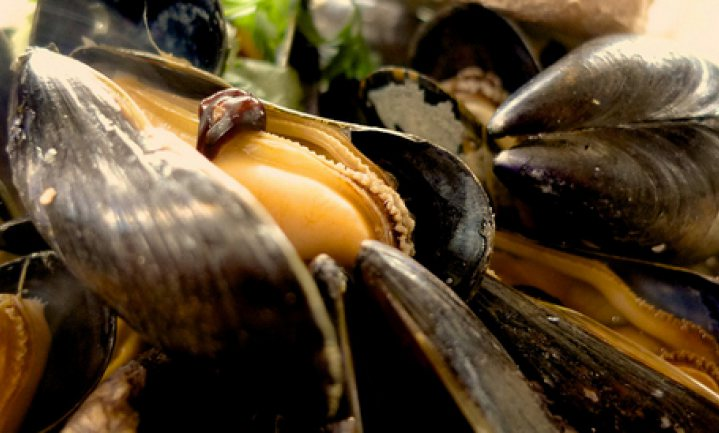 Culinair ontdekt: Nederland