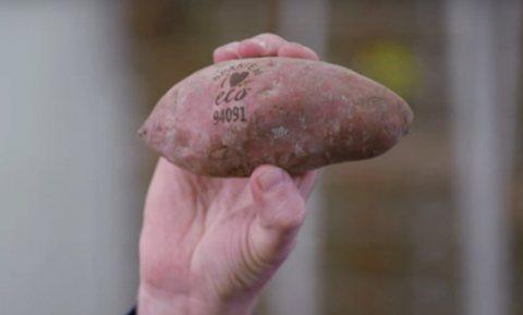 Gaan biologische producten weer terug in plastic?
