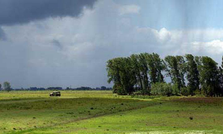 'Nederland verbruikt drie Nederlanden'