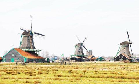 Nederland krijgt oorvijg van Europese beleidsmakers op het gebied van landbouw