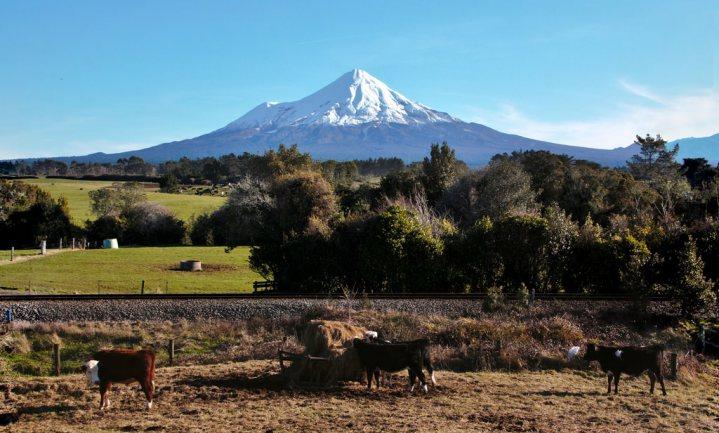 Toeristen in Nieuw-Zeeland moeten beloven netjes met de natuur om te gaan
