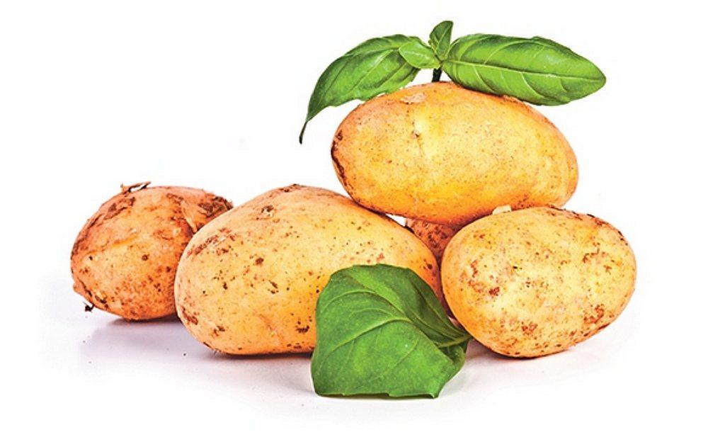 Culinair ontdekt: 'Nieuw patatjes'
