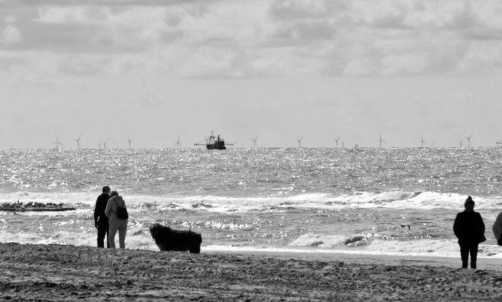 Noordzee in concept verdeeld tussen vissers, natuur en energiewinning