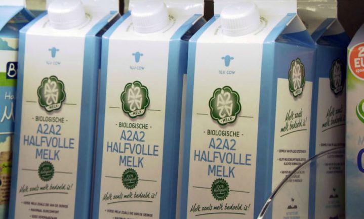 'Oerkoeienmelk' tegen lactose-intolerantie