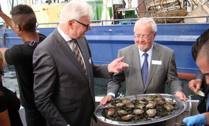 Eerste sleep oesters aan wal in Bruinisse