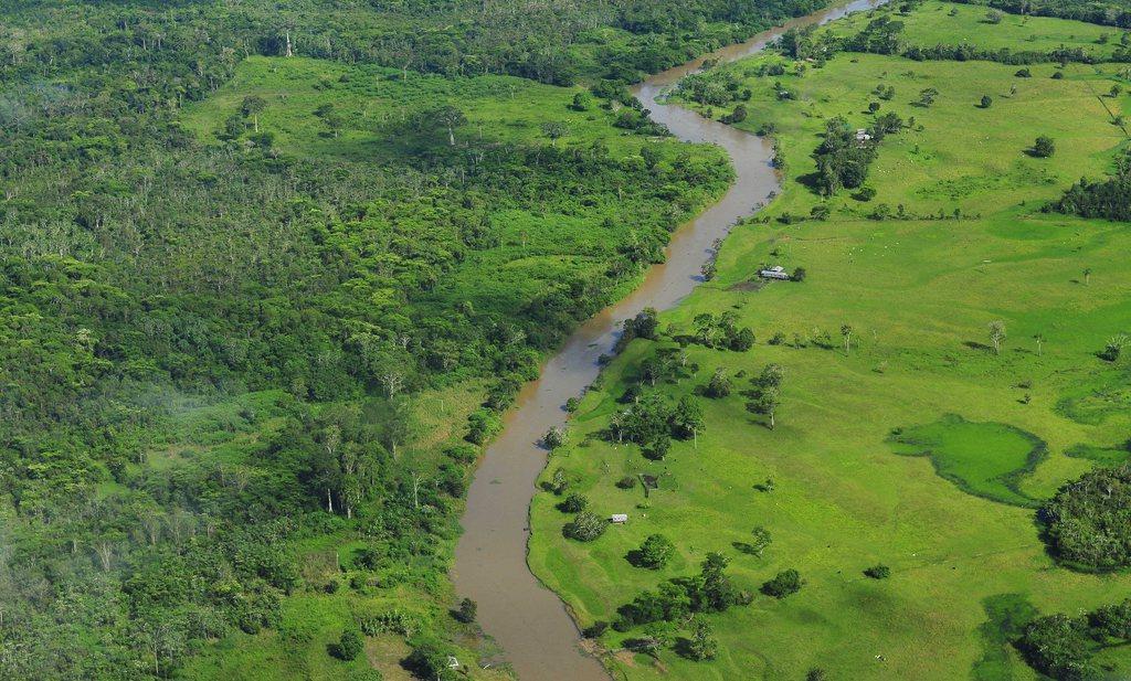 Frankrijk verbiedt vanaf 2030 import van producten die elders ontbossing veroorzaken