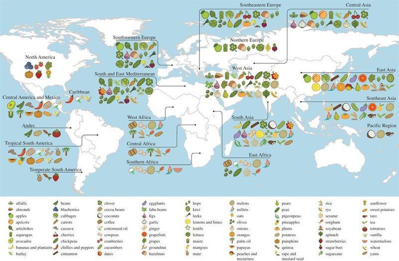 Twee derde nationaal voedsel oorspronkelijk buitenlands
