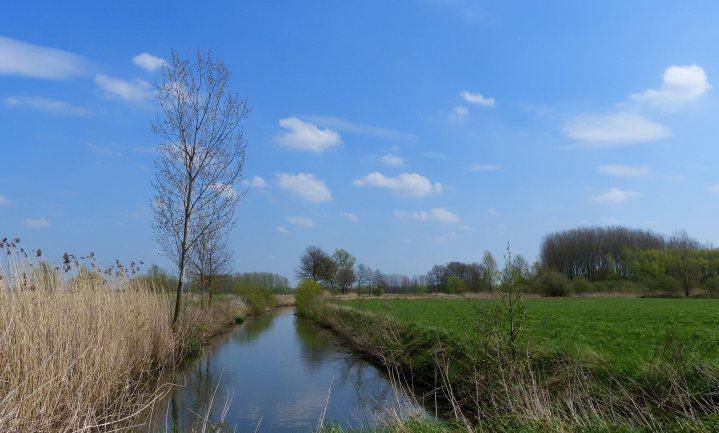 Mestnorm in Vlaamse wateren met een factor 6 overschreden