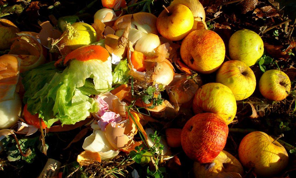 Ruslandcrisis leidt tot meer belangstelling voor Hollands fruit
