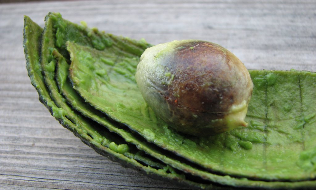 Avocadopiteters vergeten het velletje