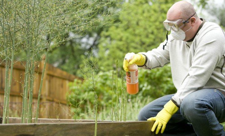 Hoogste Franse rechter geeft Monsanto ongelijk