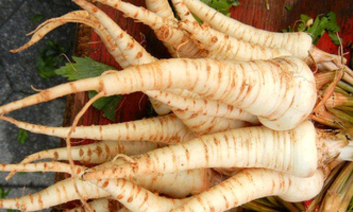 Culinair ontdekt: wortelpeterselie