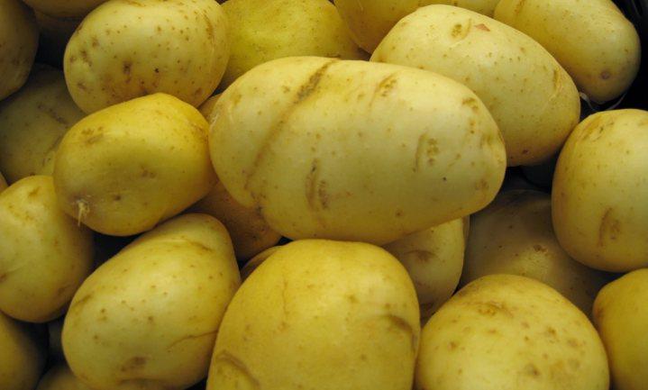 Aardappel gewild voedsel