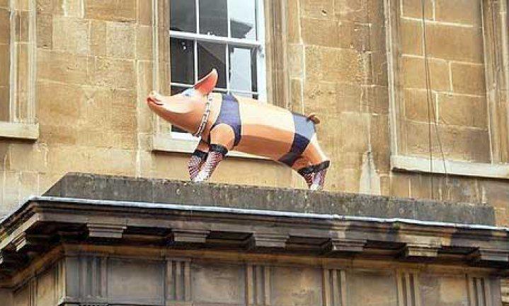 Normen in Nederland – varkens, SMK en de overheid